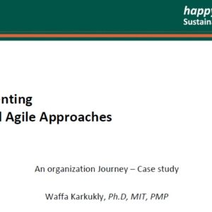 Implementing LEAN AGILE Presentation at HappyProjects13