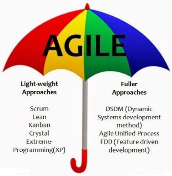 ZxIceLRdmnagfMJyiygj_agile3